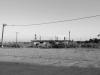 Salton Sea_30