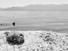 Salton Sea_7